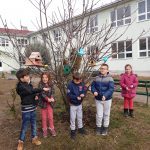 Децата со хуман гест – радост за птиците во зима!